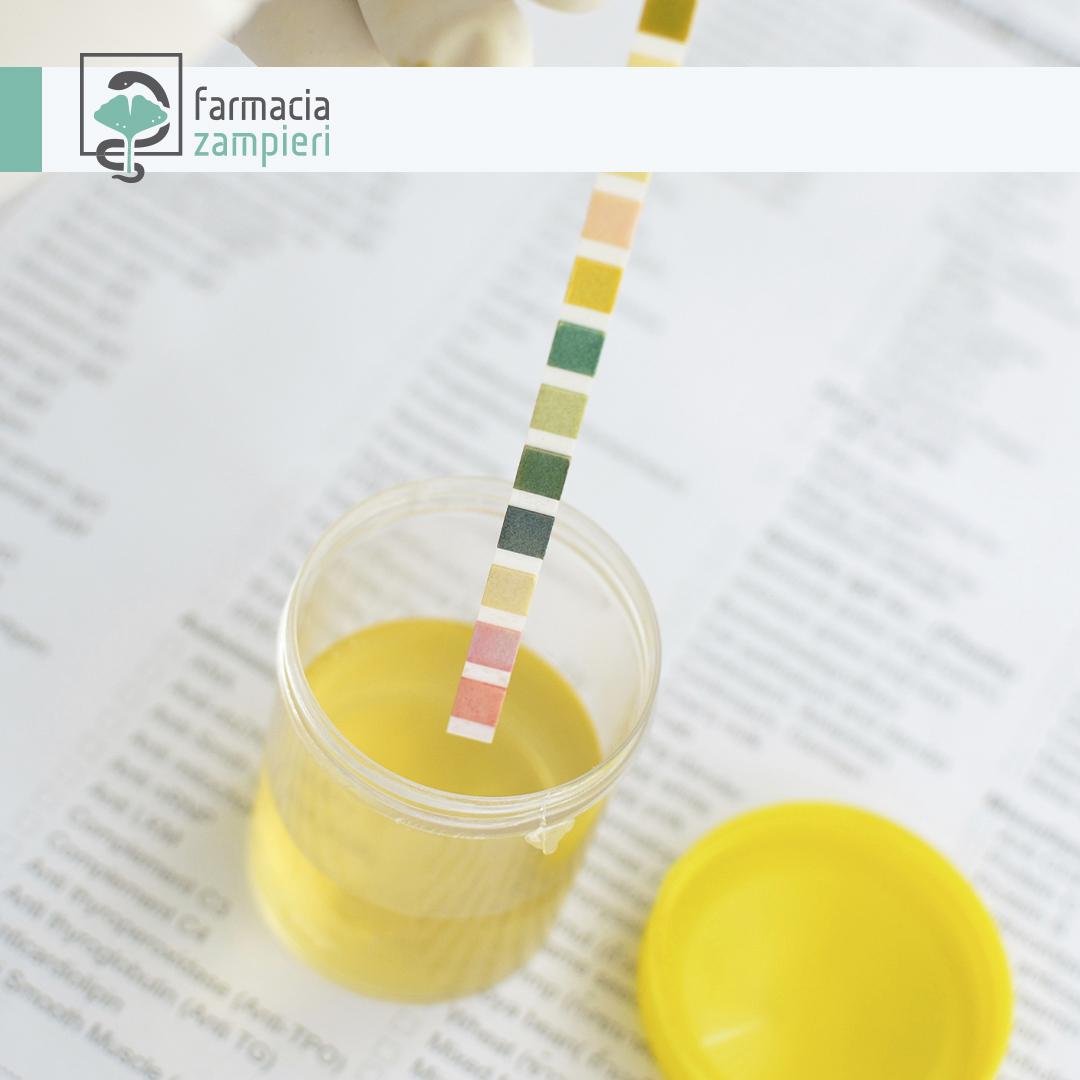 misuratore acido urico? Trova on line su Ausilium!